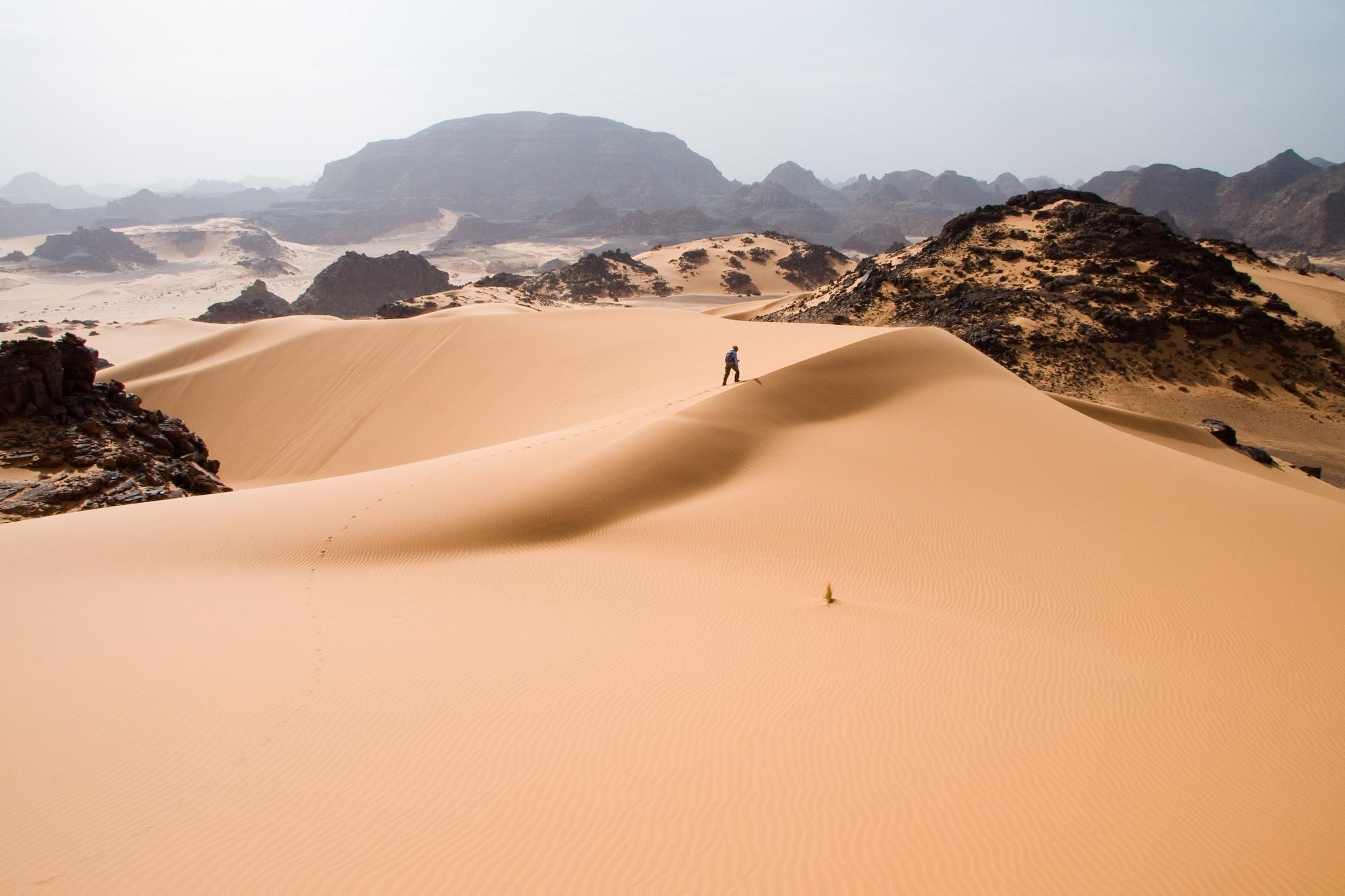 sahara scene