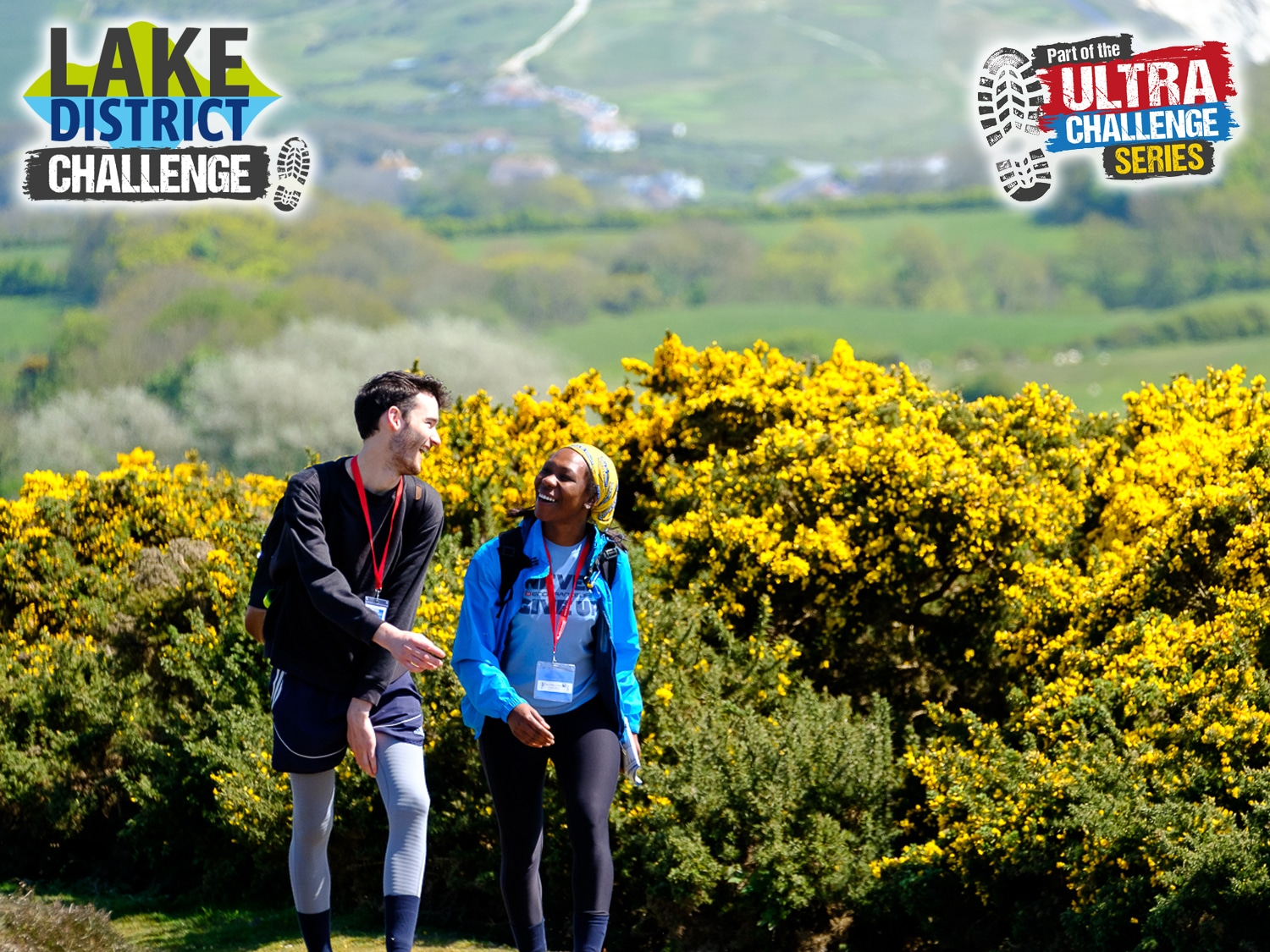 Image shows two walkers with yellow gorse in the background
