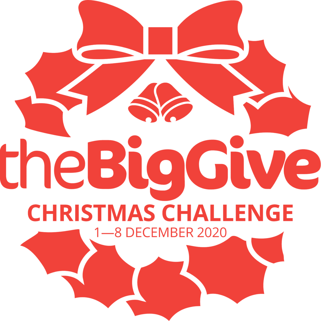 The Big Give Christmas Challenge logo